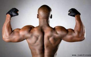 Как правильно поднять уровень тестостерона у мужчин?