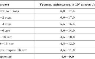 Нормативные значения лимфоцитов в крови у детей и взрослых