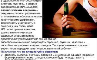 Негативное влияние алкоголя на сперму
