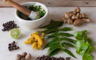 Самые эффективные рецепты лечения аденомы народными средствами