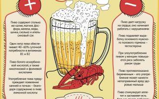 В чем заключается вред пива для мужчин: мнение специалистов