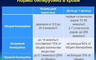 Повышение нормы билирубина у мужчин