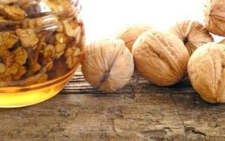 Как могут помочь грецкие орехи с медом для потенции