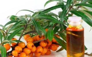 Лечение храпа облепиховым маслом