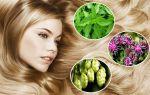 Применение лекарственных трав против седины волос