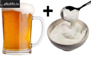 Помогает ли пиво со сметаной для потенции?