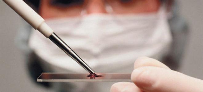 Процесс обновления крови у мужчин