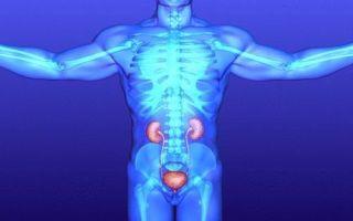 Цистит у мужчин симптомы и правильное лечение