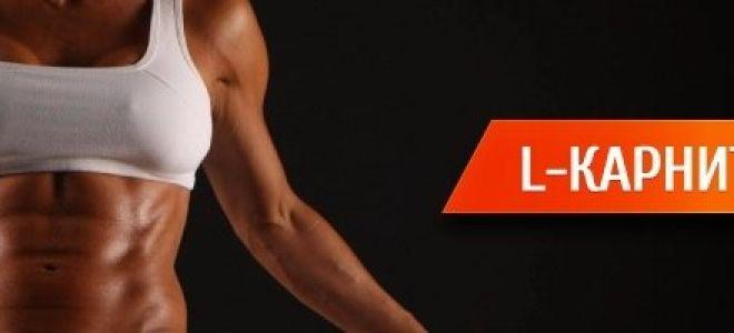 L-карнитин: что это за средство и как его принимать