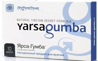 Препарат против импотенции ярсагумба: отзывы и описание