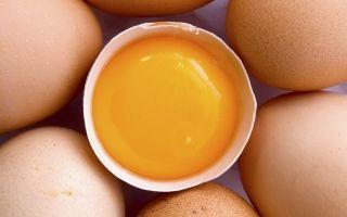 Сырые яйца и их польза для повышения потенции мужчин
