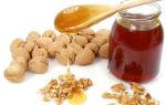 Какую пользу могут принести орехи с медом для мужчин?