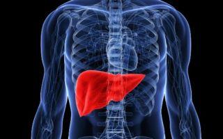 Возрастные нормы билирубина в крови у мужчин