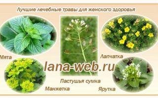 Травы от бесплодия: эффективно ли такое лечение?