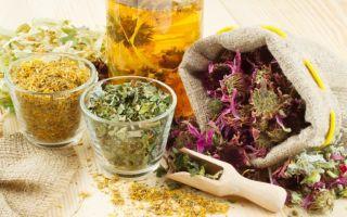 Народное лечение простатита травами