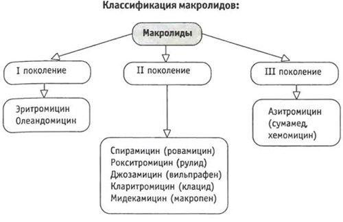 таблица макролиды