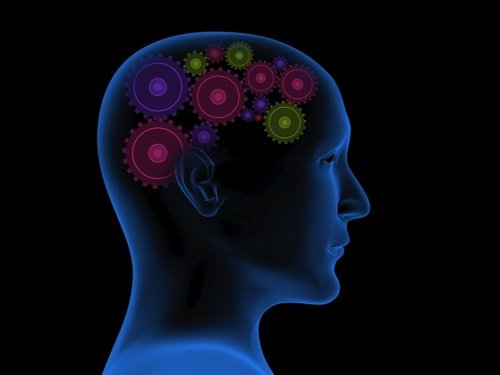 активная умственная деятельность