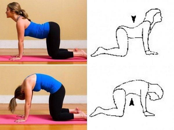 выгибание спины