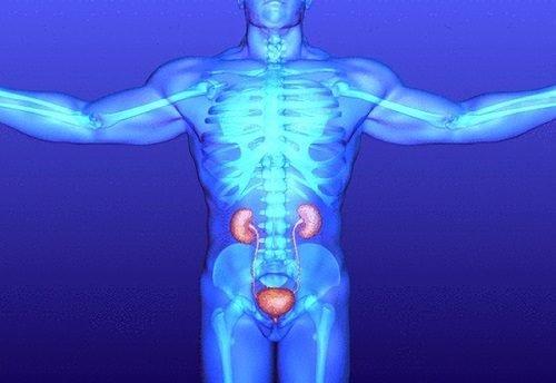 Цистит у мужчин признаки симптомы ощущения