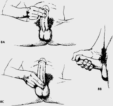 Увеличение члена массажем. Техника и видео