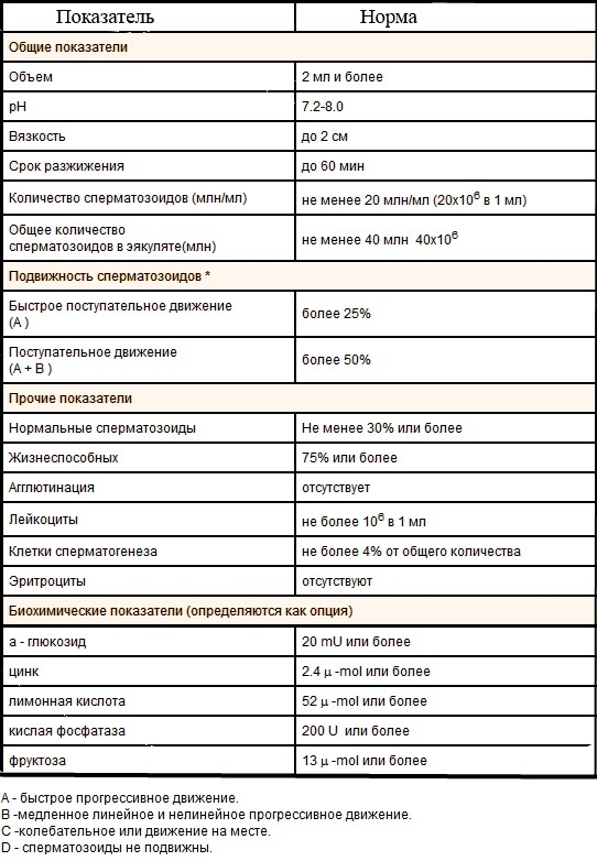 Что покажет спермограмма: анализ, результаты, нормы и отклонения