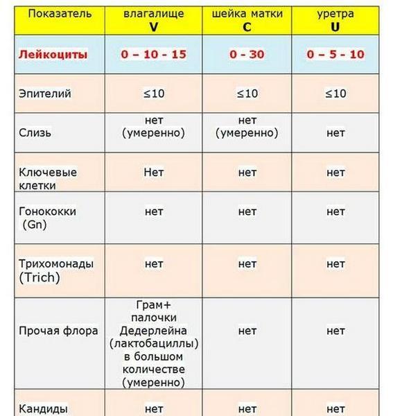 Анализ мазка из уретры у мужчин расшифровка