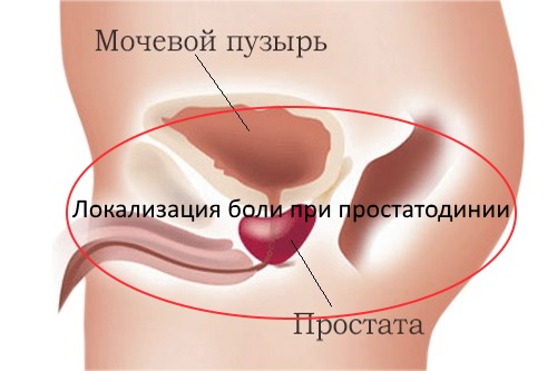 Основные причины и лечение сперматореи