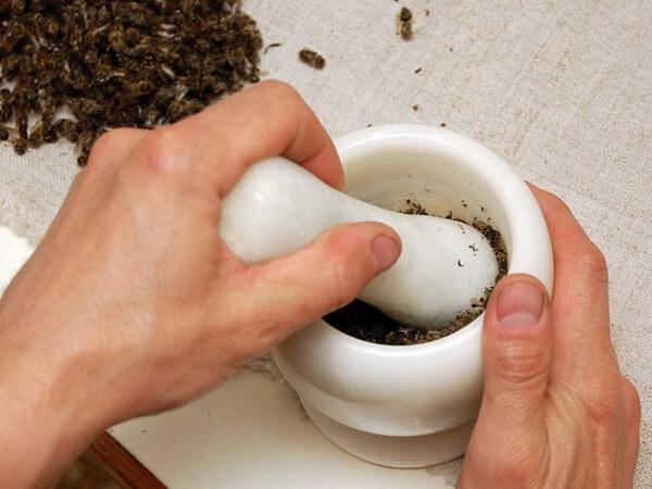 Актуальные рецепты лечения простатита подмором пчел