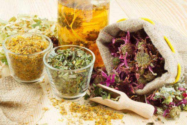 Лекарственные травы для лечения простатита