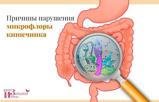 Дисбактериоз у мужчин симптомы фото -