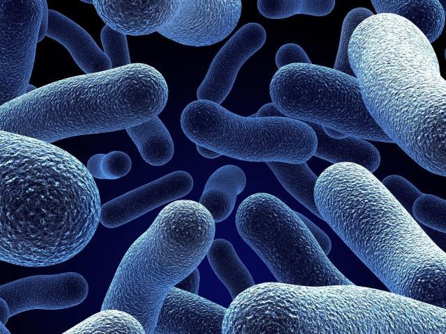Диагностика и лечение заболевания бактериоспермия
