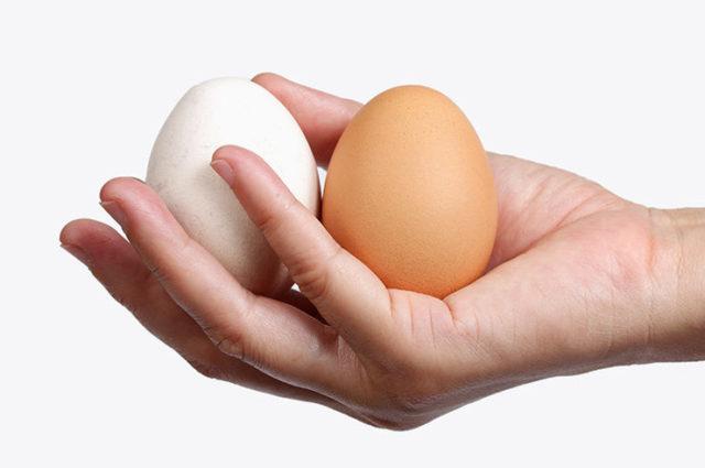 Рост яичек у мужчин