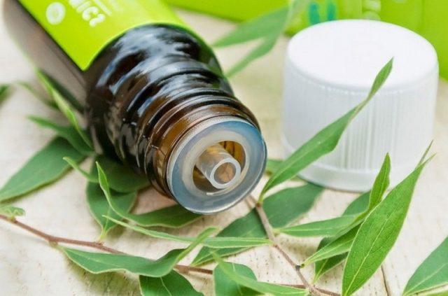 Лечение грибка ногтей в домашних условиях маслом чайного дерева