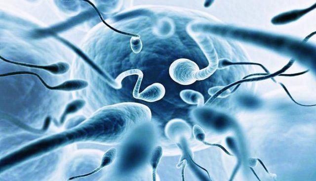 Лечение простатита и улучшение качества спермы