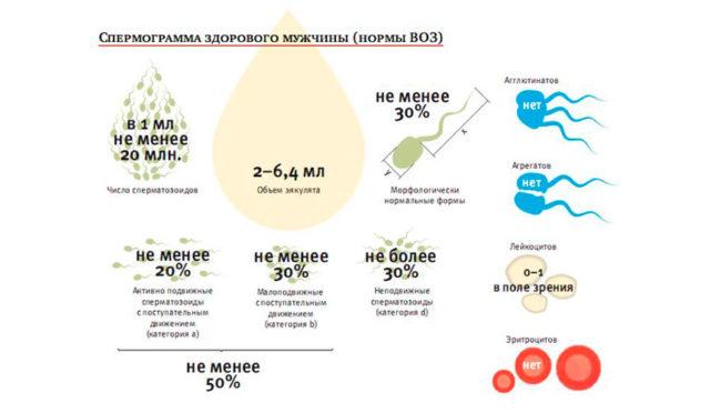 Препараты для повышения активности спермиков